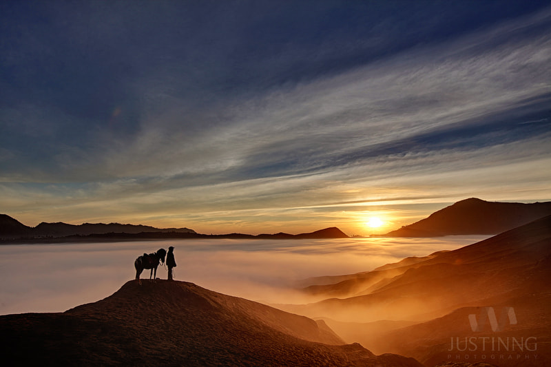 Photograph Lone Horseman by Justin Ng on 500px