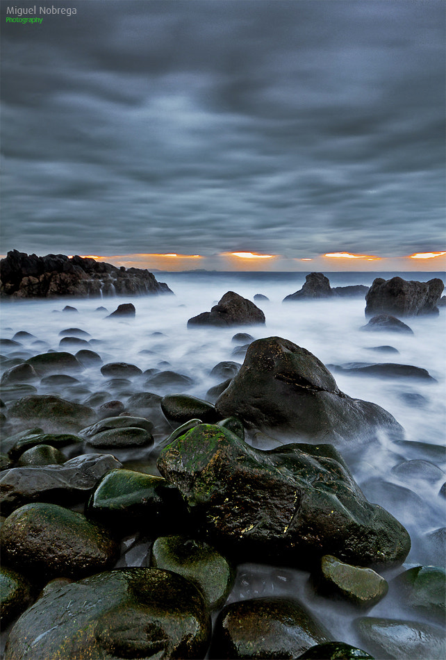 Photograph Rise Up by Miguel Nóbrega on 500px