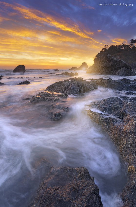 Photograph p a s s i o n by Aaron Pryor on 500px