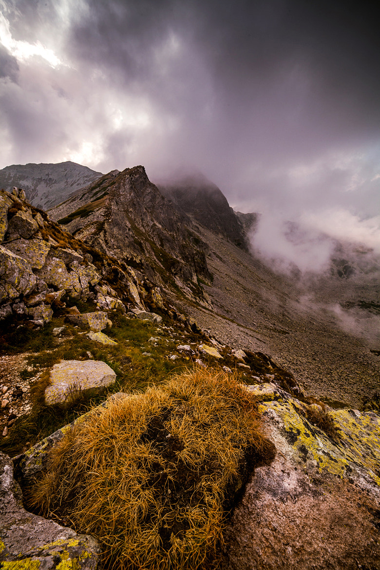 Photograph Misty Mountains by Dragos Pop on 500px