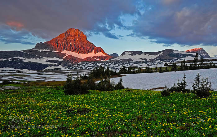 a 4am sunrise at Logan Pass in Glacier NP, Montana