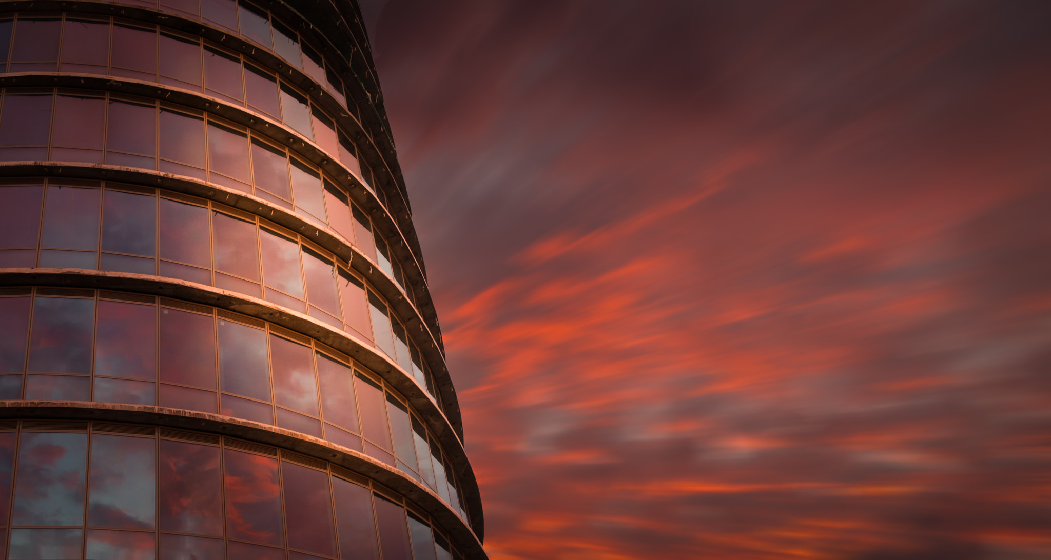 Photograph Pelli in Red by Hani Latif Zaloum on 500px