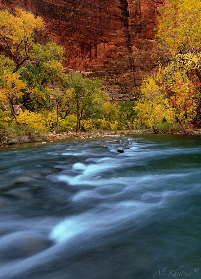 Photograph Zion 1 by Ali Khataw on 500px