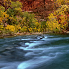 Autumn in Zion National Park. To capture this image I had to stand in the middle of the river (freezing water). Thanks to a friend and my tripod which I used to assist me to prevent flowing down the strong current! The resulting image was worth it!