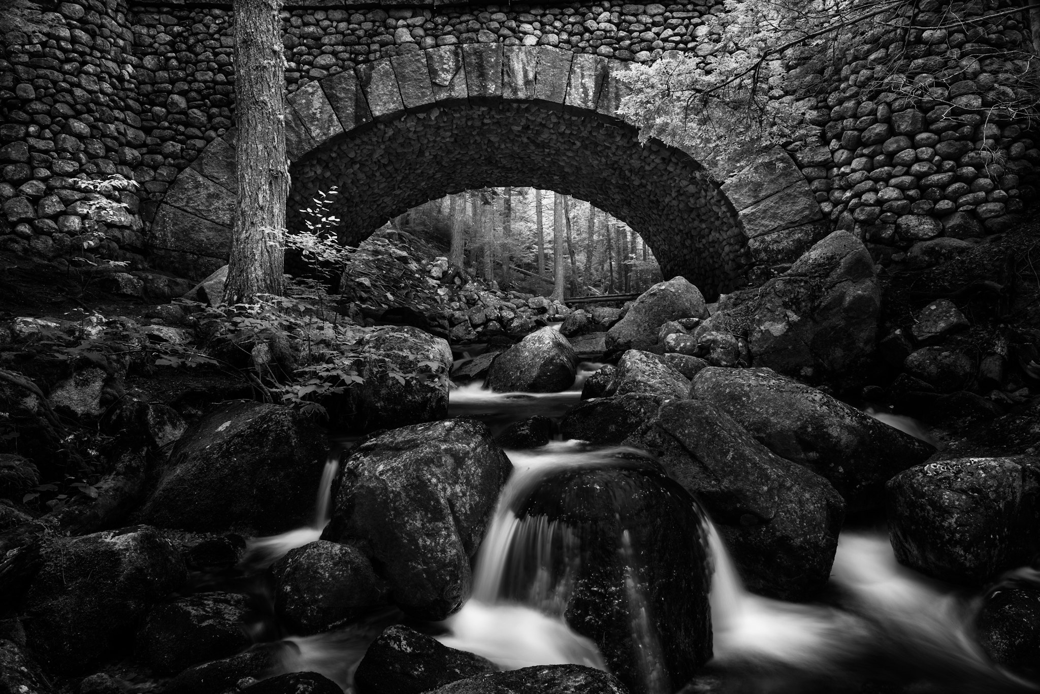 Photograph Duck Brook Bridge by Moe Chen on 500px