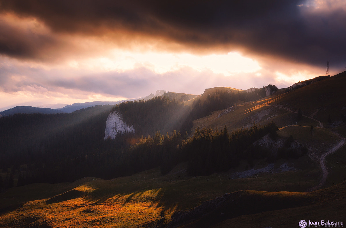 Photograph Escape to bliss by Ioan Balasanu on 500px