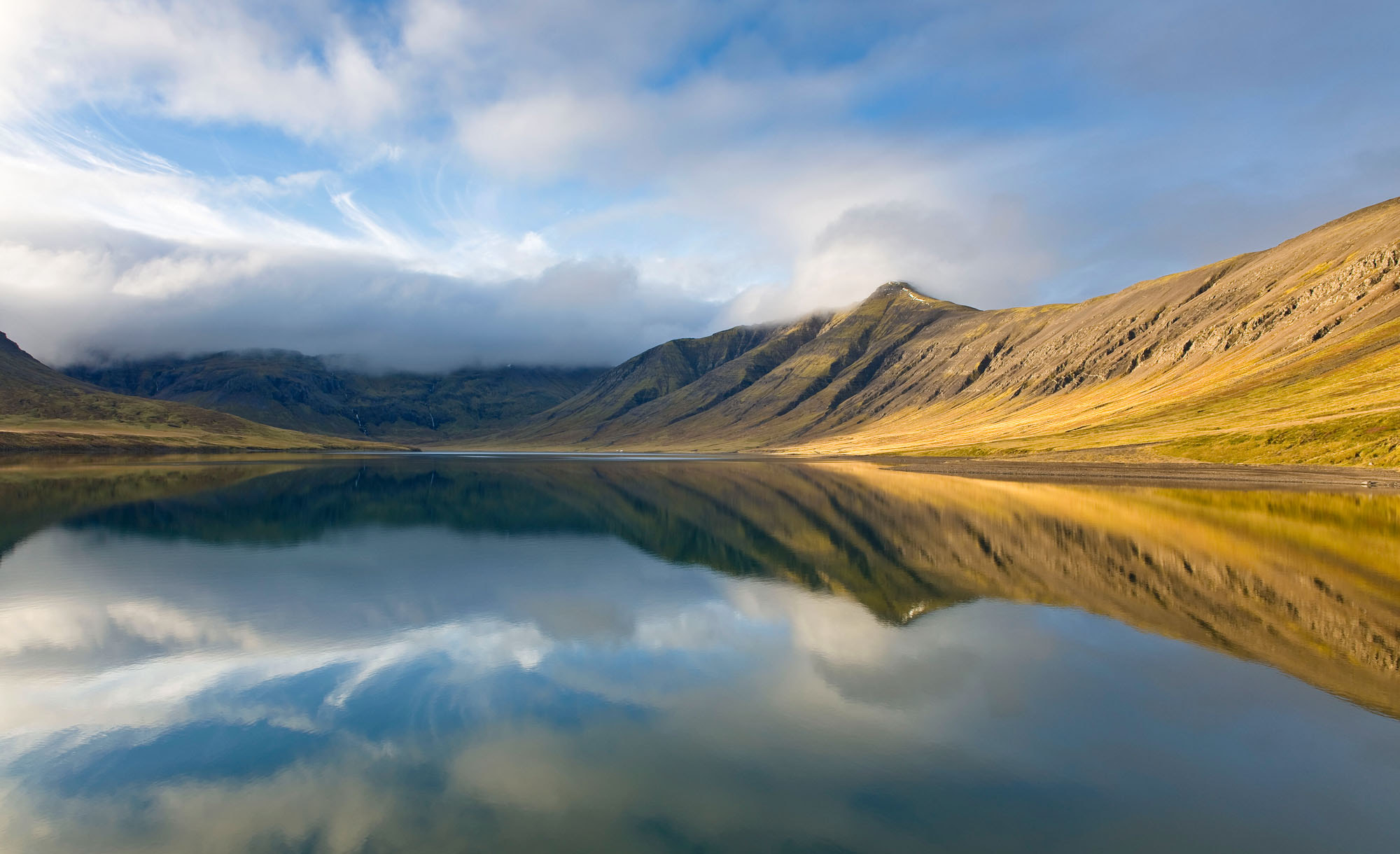 Photograph Purity by Daniel Bosma on 500px