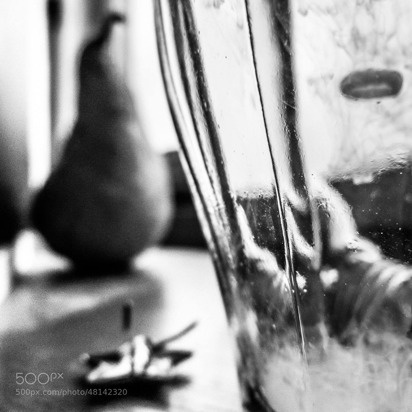 Photograph Still life. by Michal Jenčo on 500px