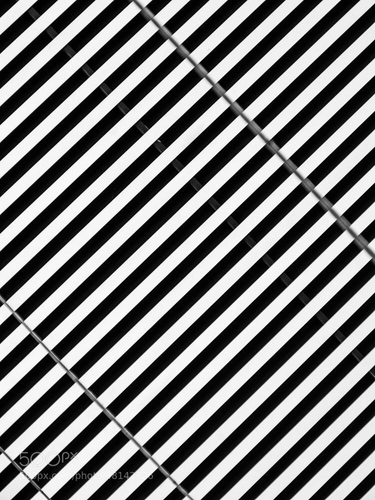 Photograph Stripes. by Michal Jenčo on 500px