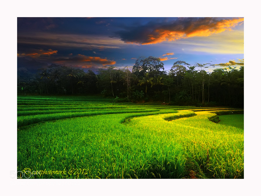 Photograph Gunung Pati, Central Java by D'cast Photowork on 500px