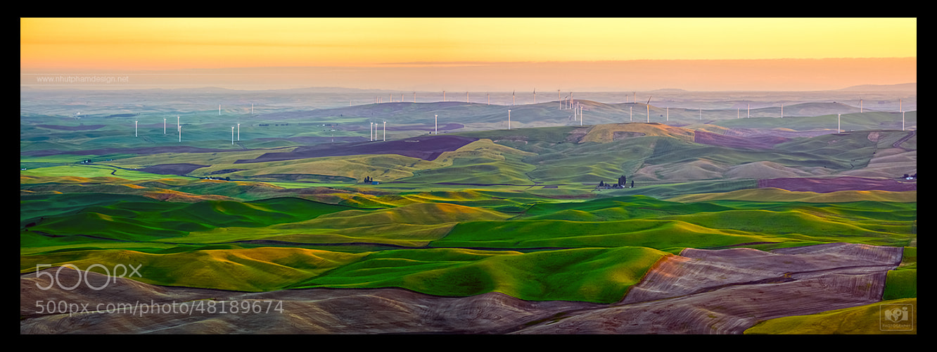 Photograph Painting of Palouse! by Nhut Pham on 500px