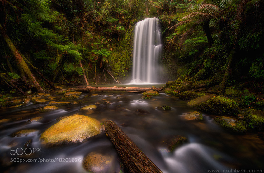 Photograph Beauchamp Falls by Lincoln Harrison on 500px