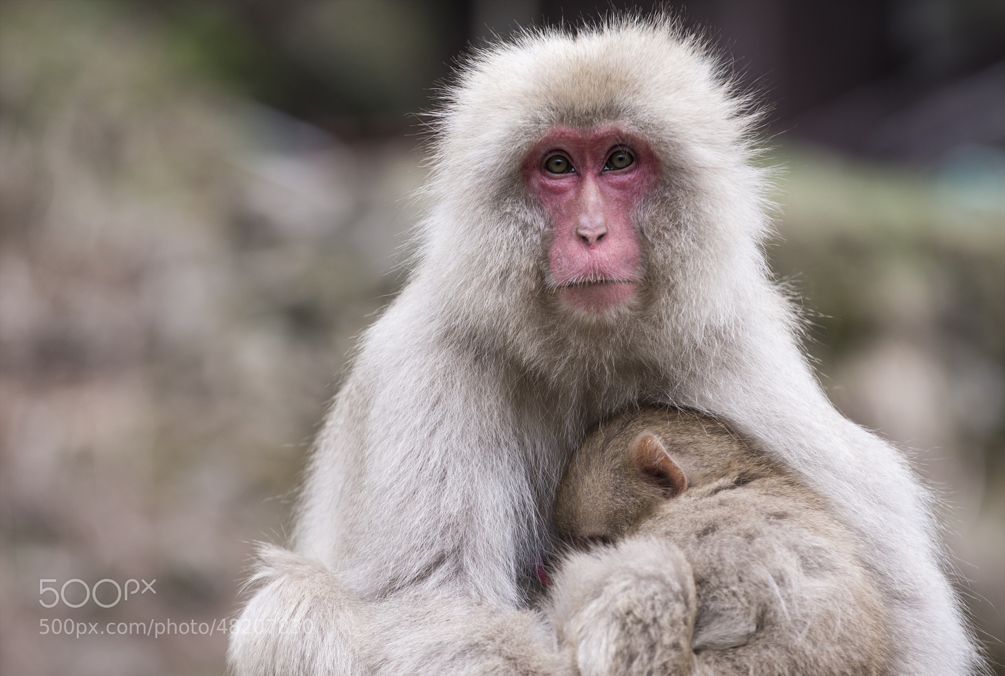 Photograph Mother Loves You! by hugh dornan on 500px