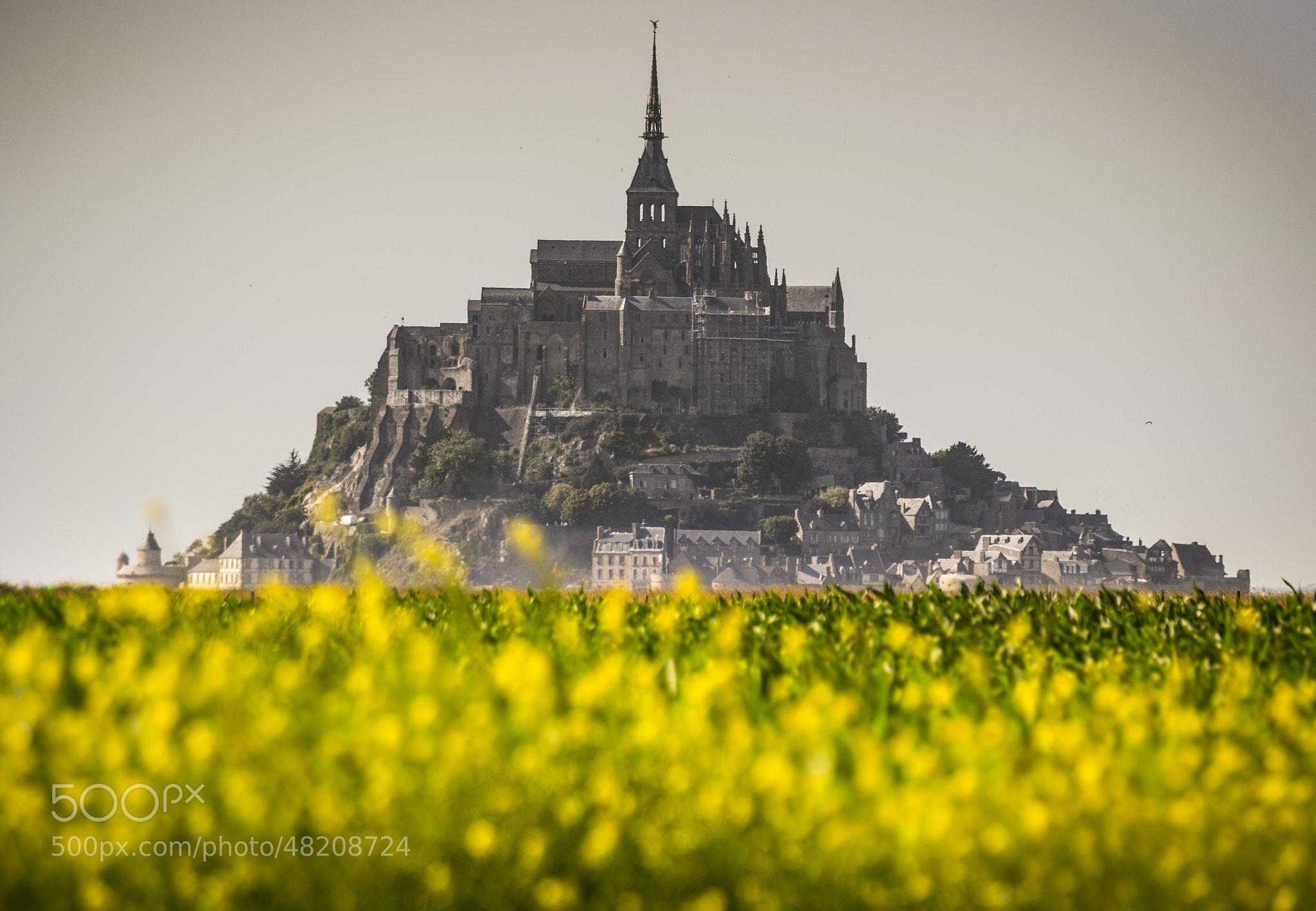 Photograph Le Mont fleuri by Stefano Termanini on 500px