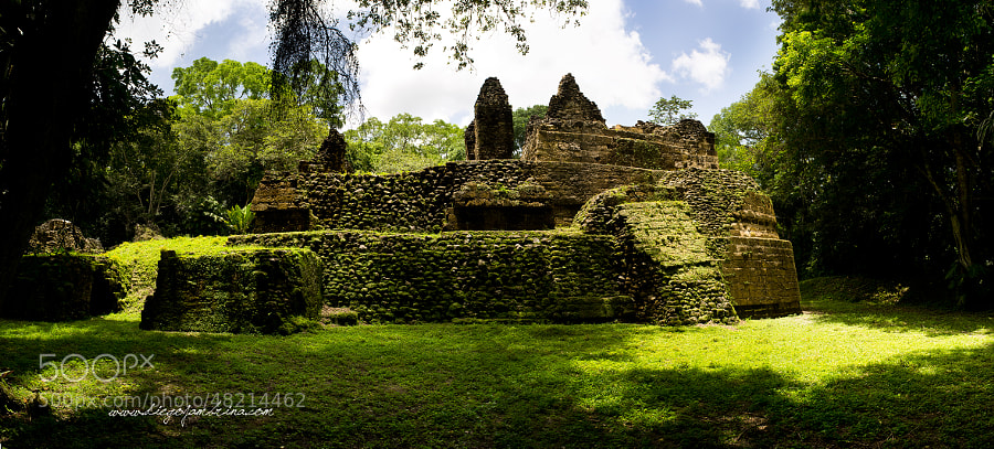 La selva devora las ruinas de Uaxactún by Diego Jambrina on 500px.com