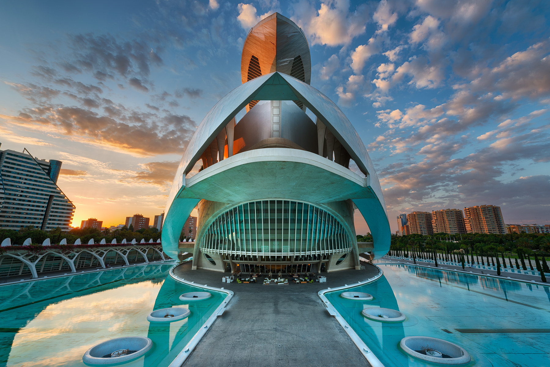 Photograph The Art Science of Valencia - Ciudad de las Artes y las Ciencias by Danny Xeero on 500px