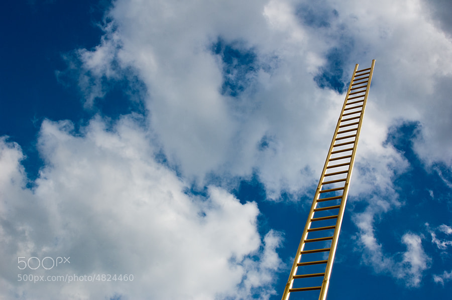 Golden Ladder by Roger Graf (allesroger)) on 500px.com