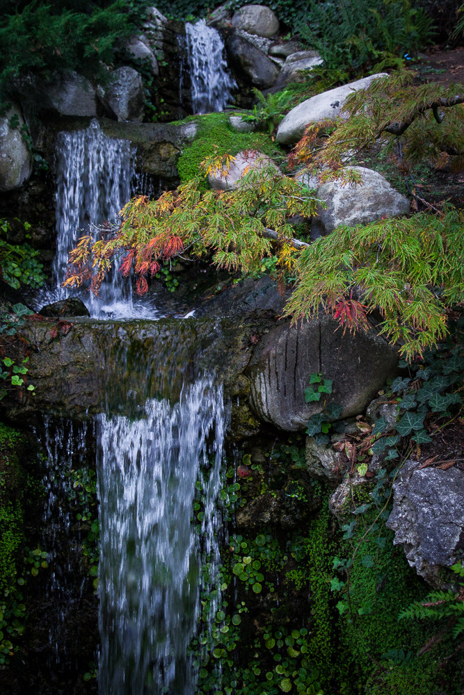 Photograph Hakone Falls by Dayne Reast on 500px