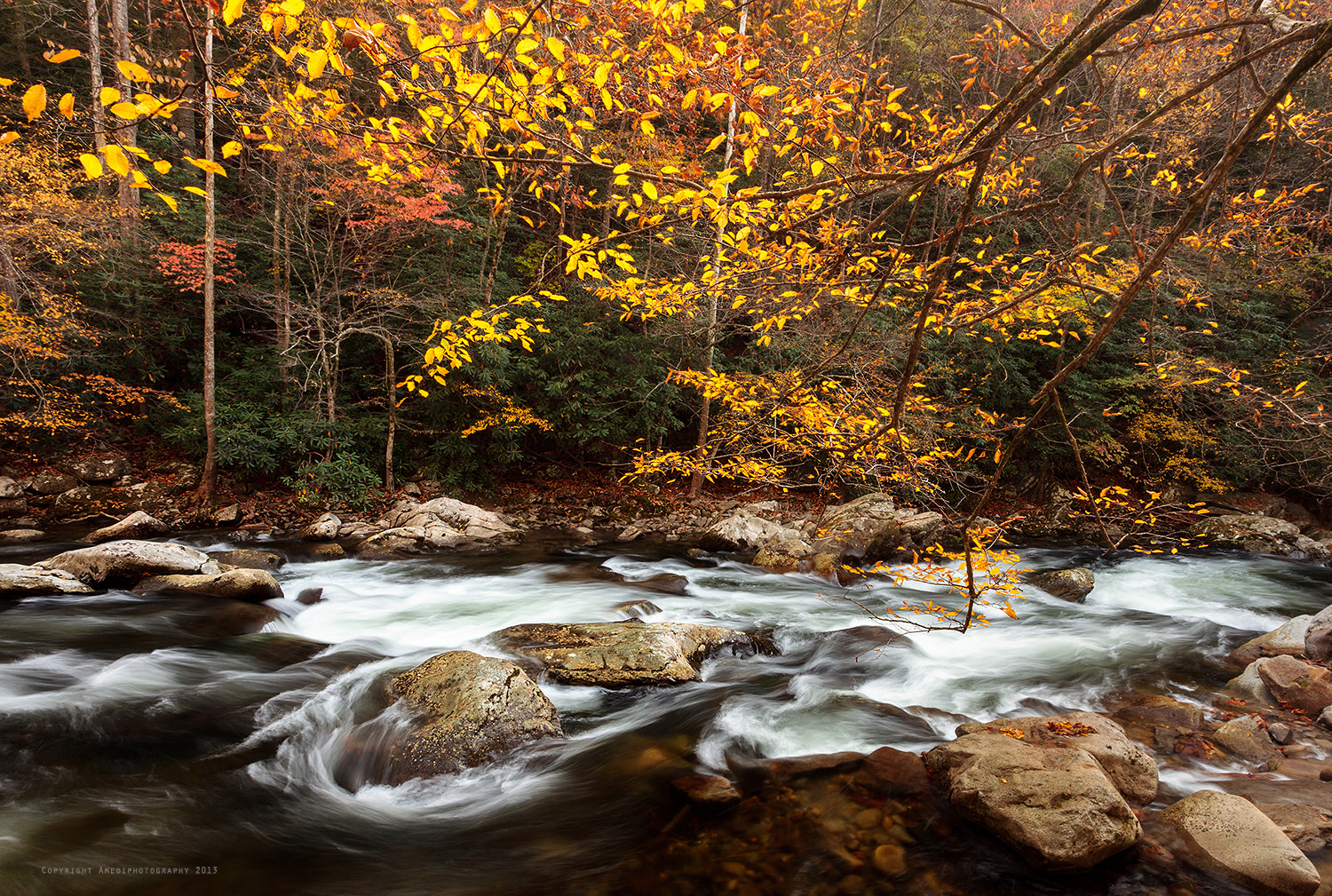 Photograph Fall Colors by Lauren Bauer on 500px