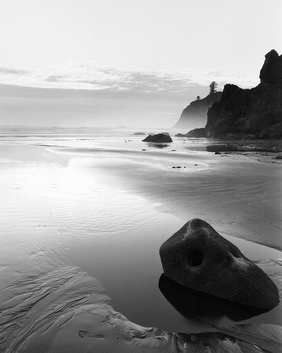 Photograph Ruby Beach at Dusk by Michael Wewer on 500px