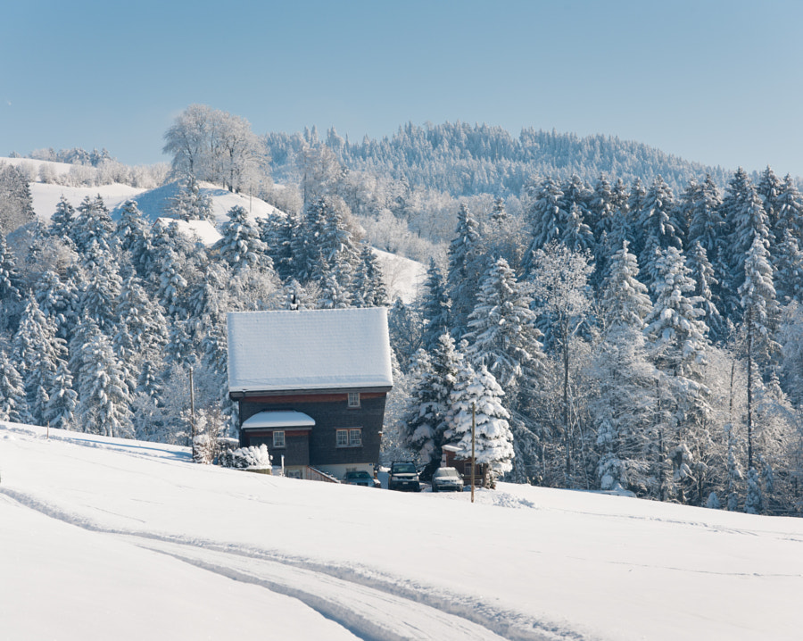Shot near Wald, AR in Switzerland at temperatures well below freezing point.