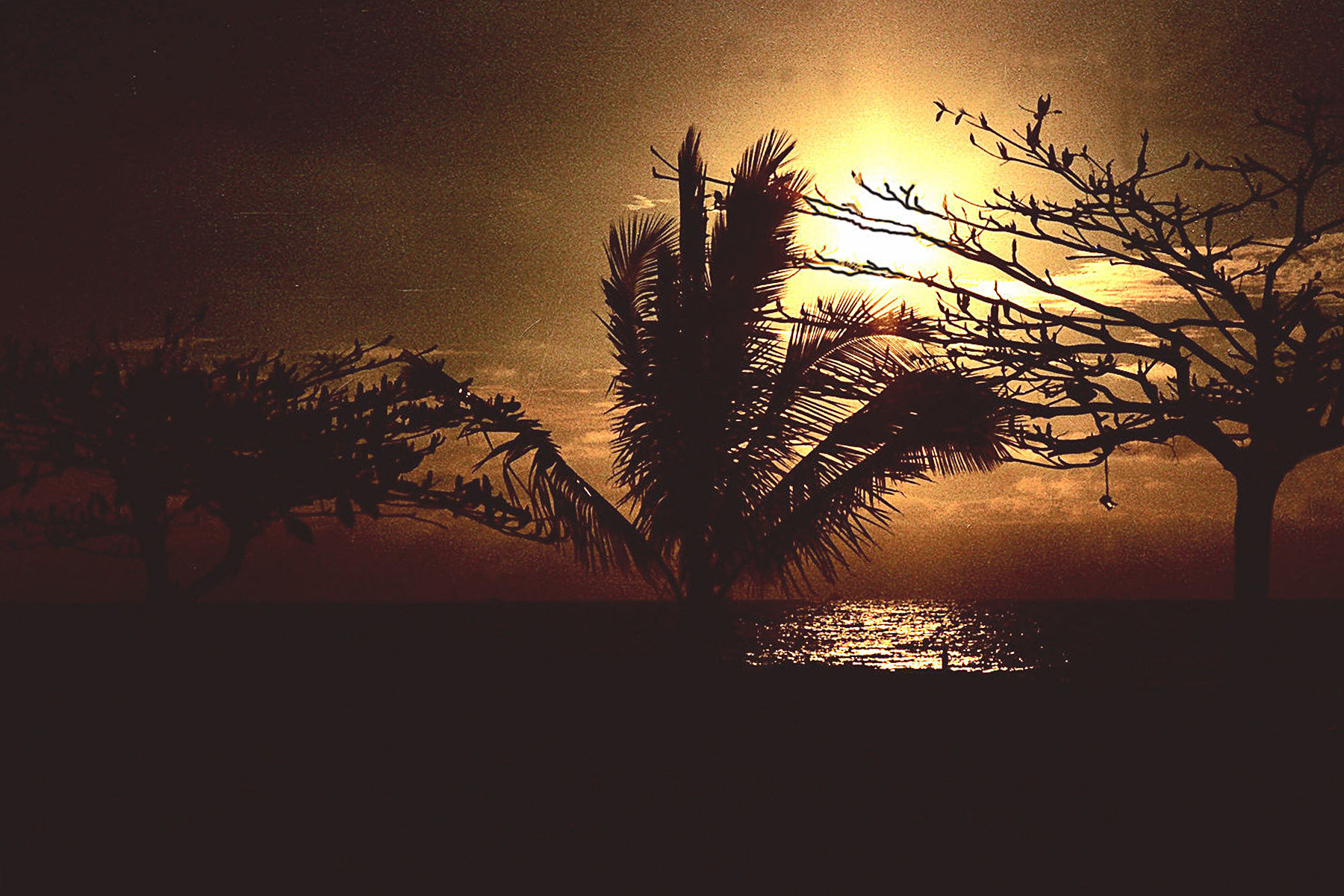 Photograph Atardecer Tropical - Tropical Sunset by Wilo Enríquez on 500px