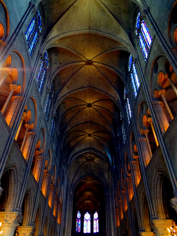 Inside the Notre Dame