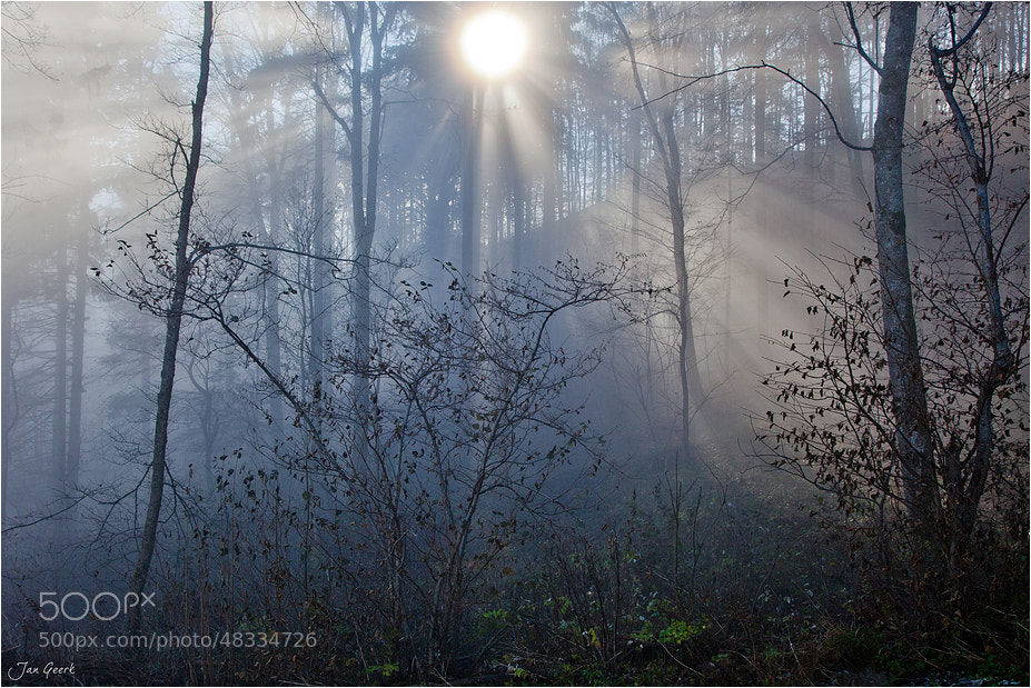 Photograph Into the mystic by Jan Geerk on 500px