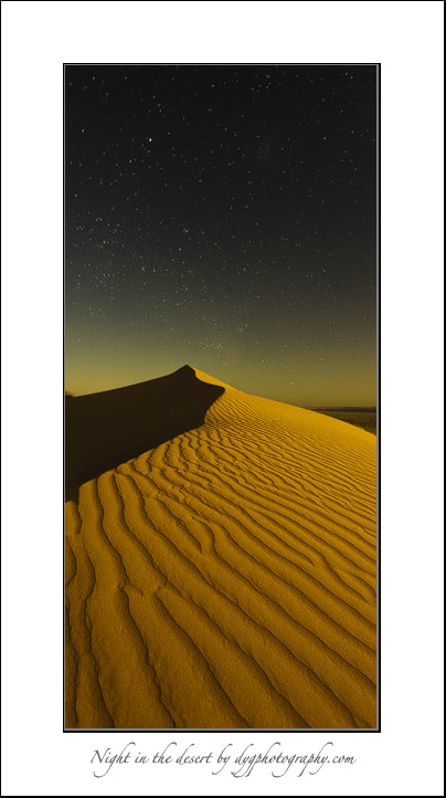 Photograph Night in the desert by donald Goldney on 500px