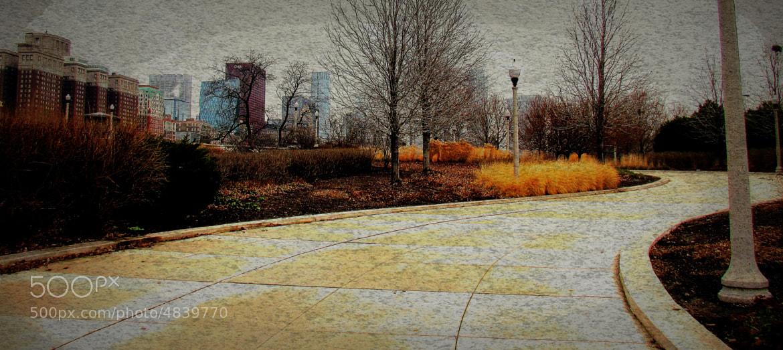 Photograph wet december by Sue  Scimeca on 500px