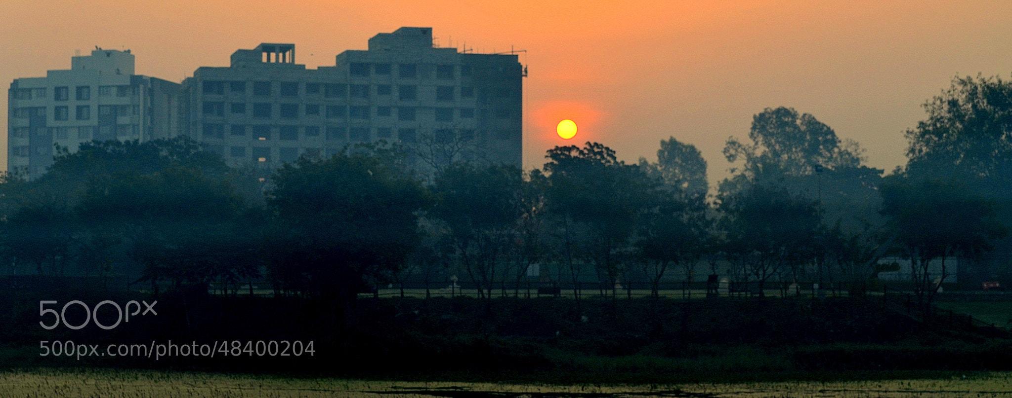 Photograph The Foggy Dawn. by Aaditya Kothari on 500px