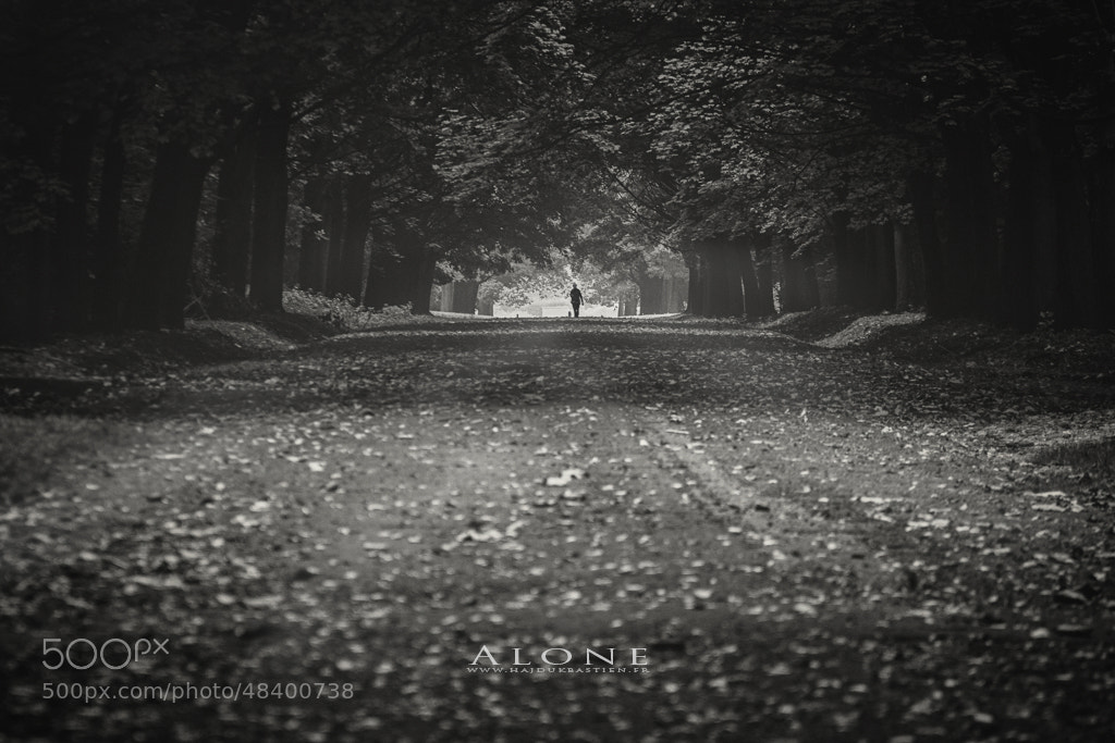Photograph Alone by Bastien HAJDUK on 500px