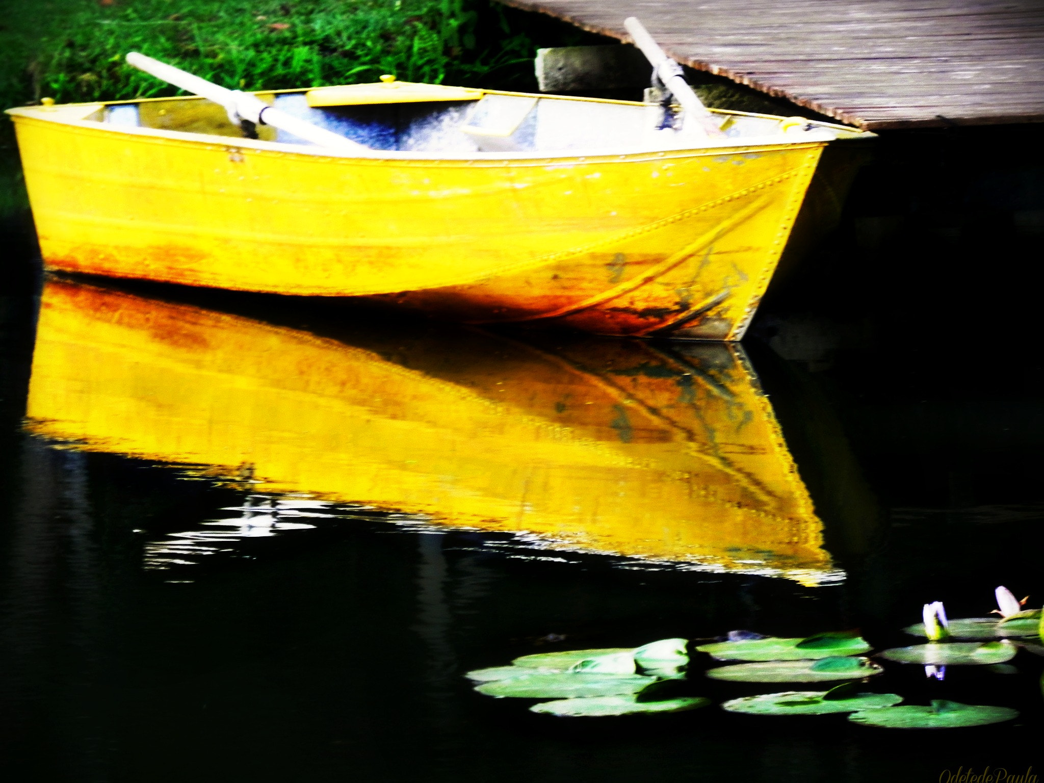Photograph o barco amarelo by Odete Paula on 500px