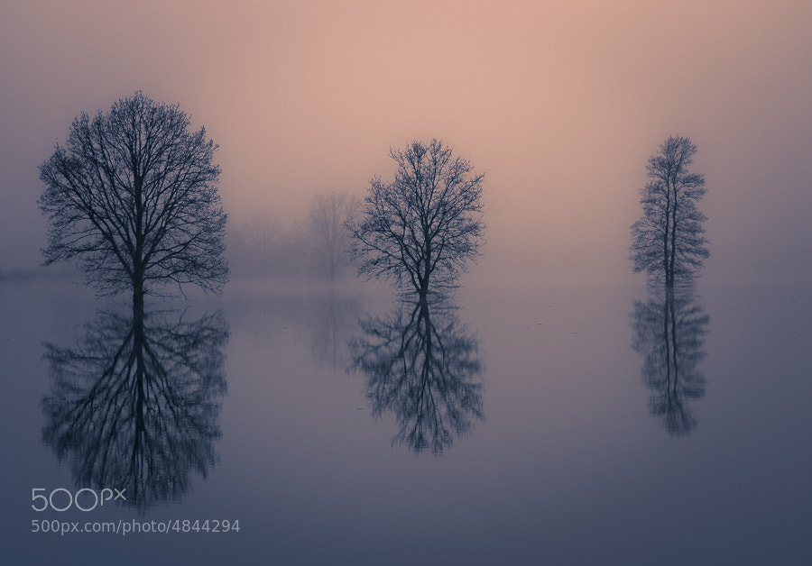 Photograph Reflections by Brane Kosak on 500px