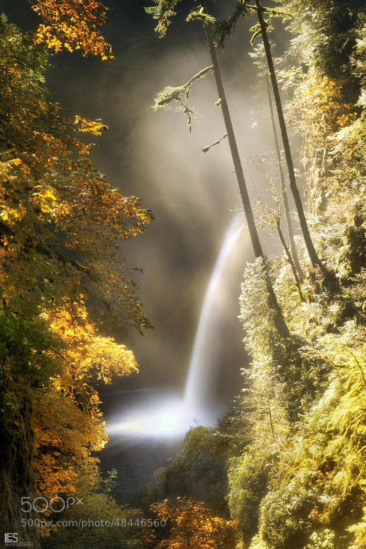 Photograph Oregon's Beauty by Leif Erik Smith on 500px