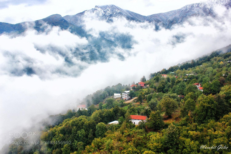 Photograph ÇALIKUŞU by Mücahit GÖLEÇ on 500px