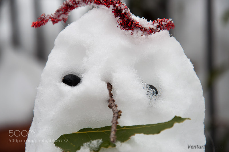 Photograph Not yet a snowman by Francesco Venturini on 500px