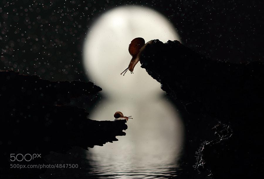 Moon River by AimishBoy . (AimishBoy) on 500px.com