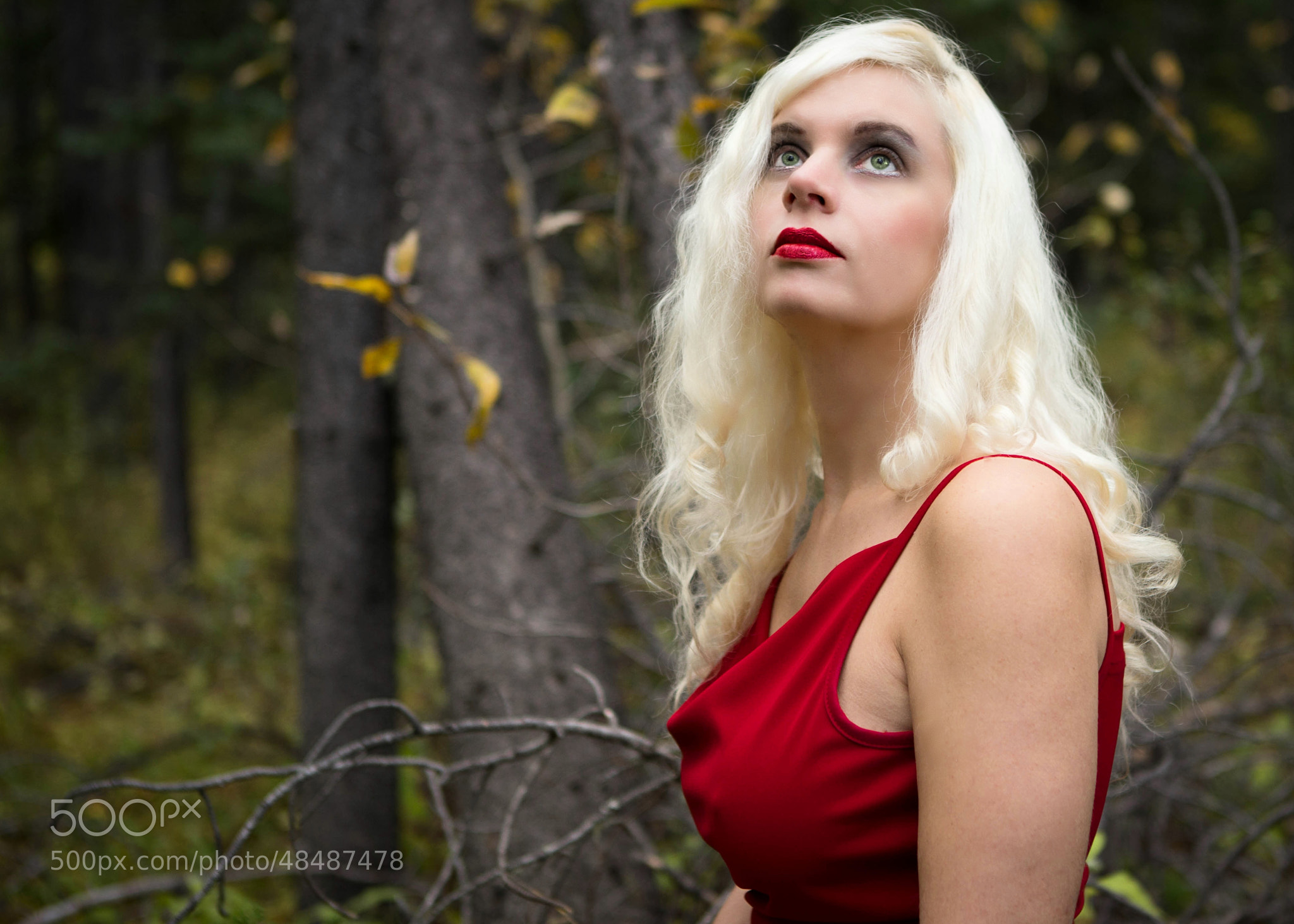 Photograph Red Sapphire by UnderDark Photography on 500px
