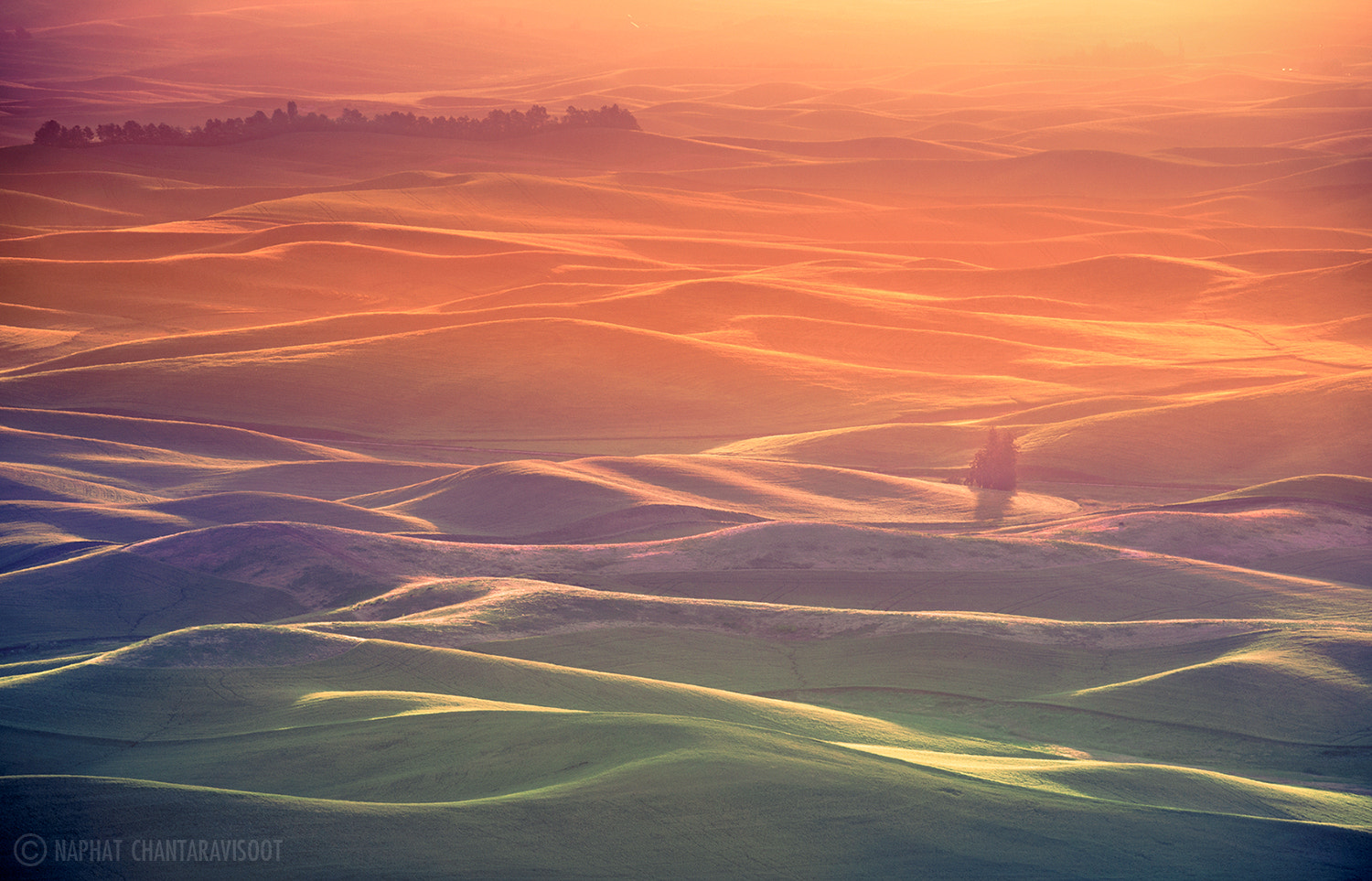 Photograph Palouse Glow by Nae Chantaravisoot on 500px