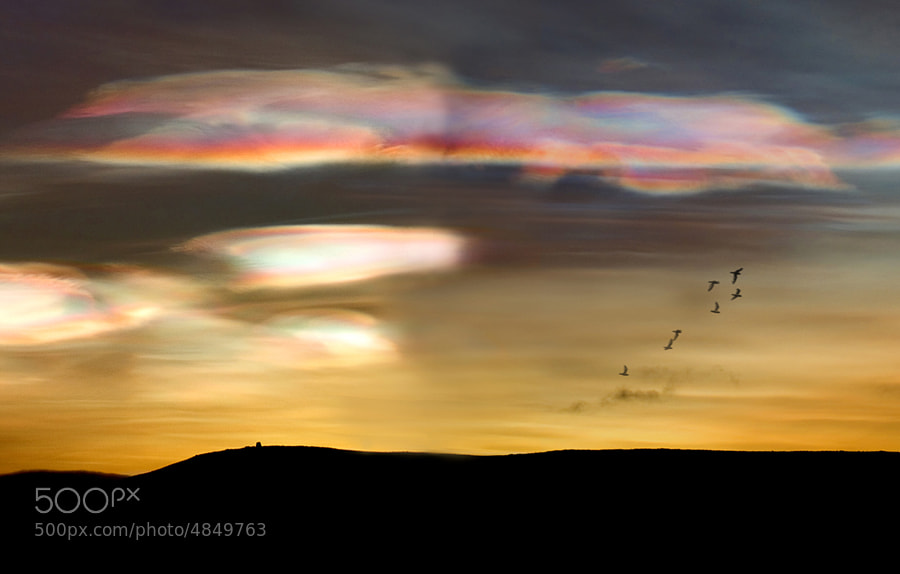 Photo taken by Olafur Thorisson, Photographer in Iceland, email:oli@olinn.net, web page:http://www.olinn.net