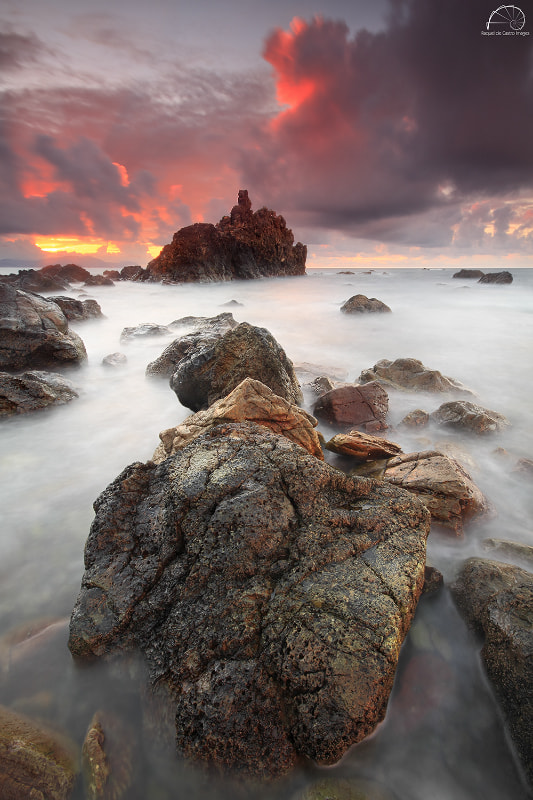 Photograph OUT, INTO THE WILD by Raquel de Castro on 500px