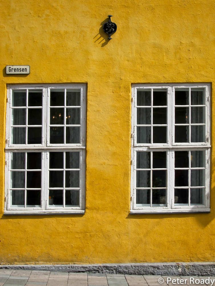 Photograph Yellow by Peter Roady on 500px