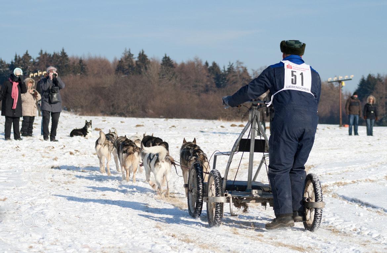 Photograph husky race by Thomas Jäger on 500px