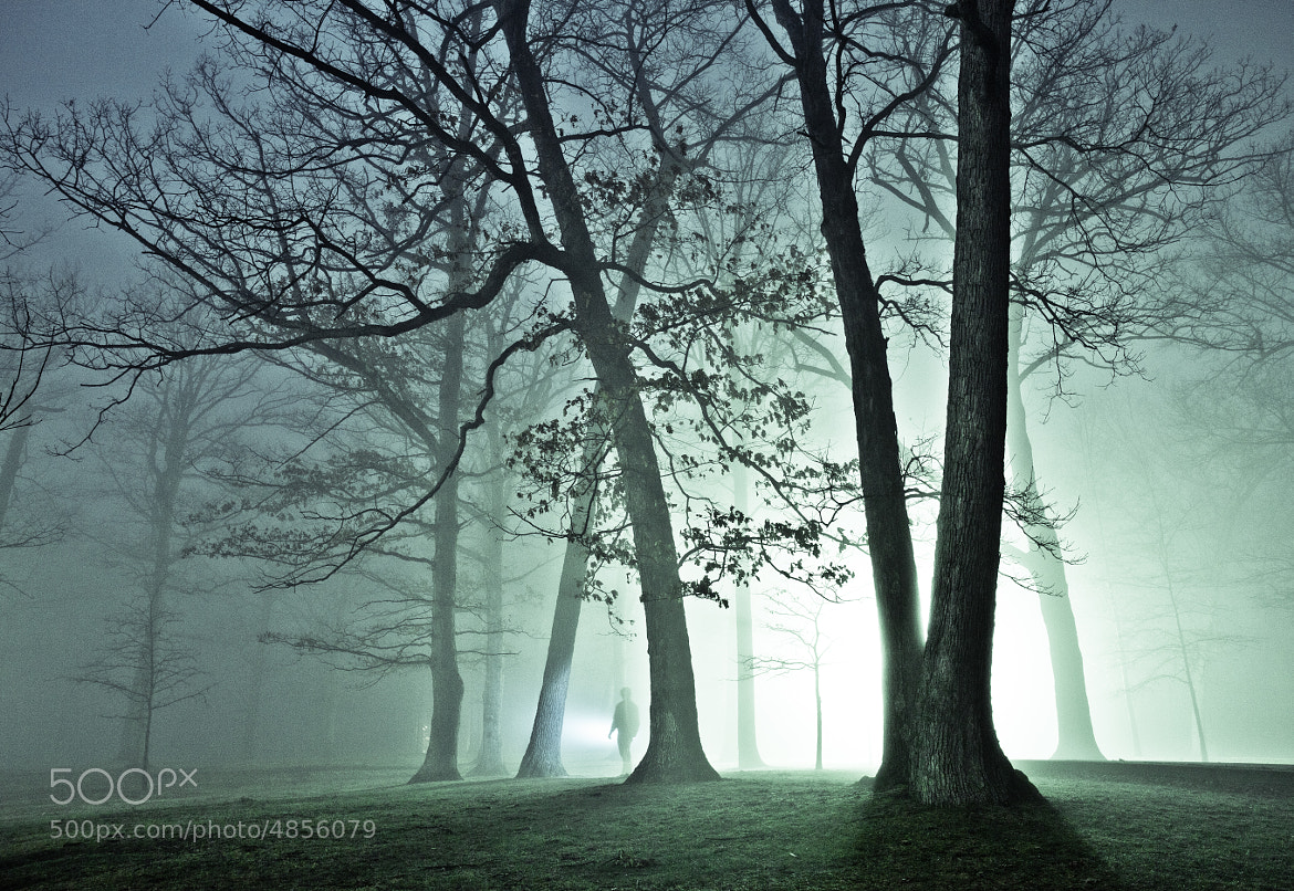 Photograph Alone in the Fog by Eric Hines on 500px
