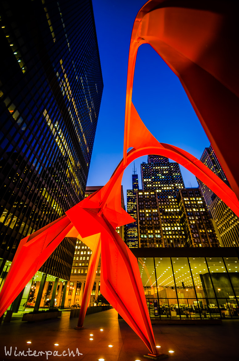 Photograph Calder's Flamingo by Raf Winterpacht on 500px