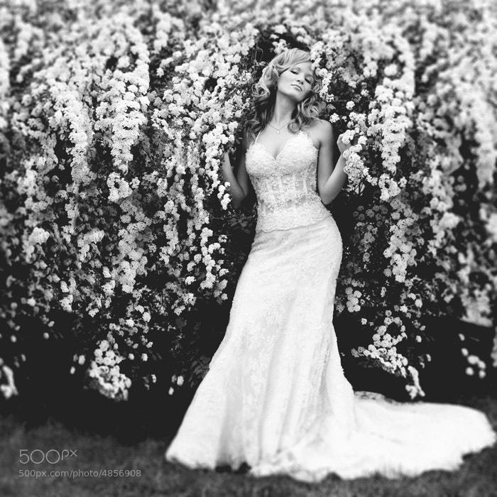 Photograph wedding by Julia Kildishova on 500px