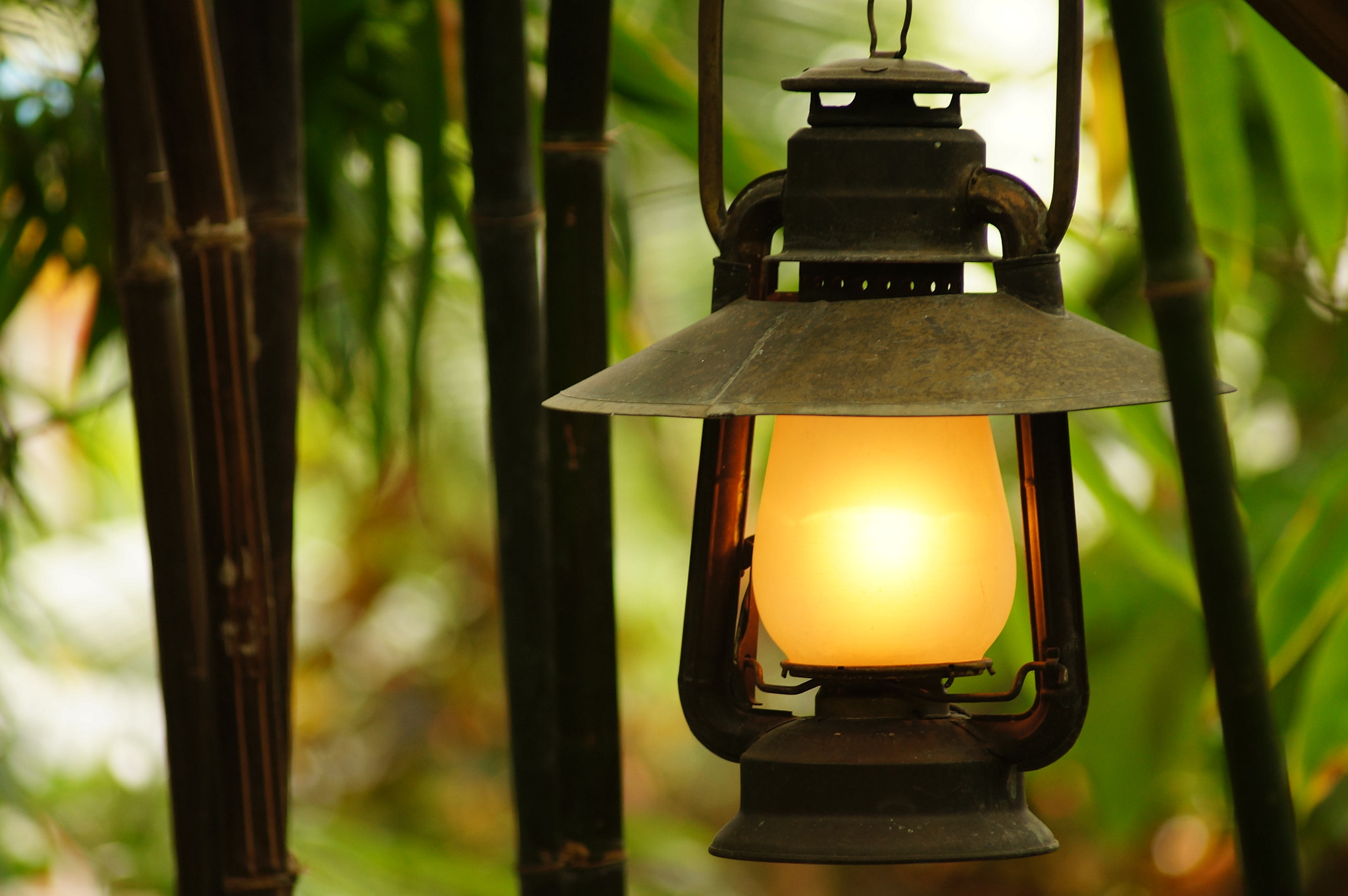 Photograph lantern by Nathan Evans on 500px
