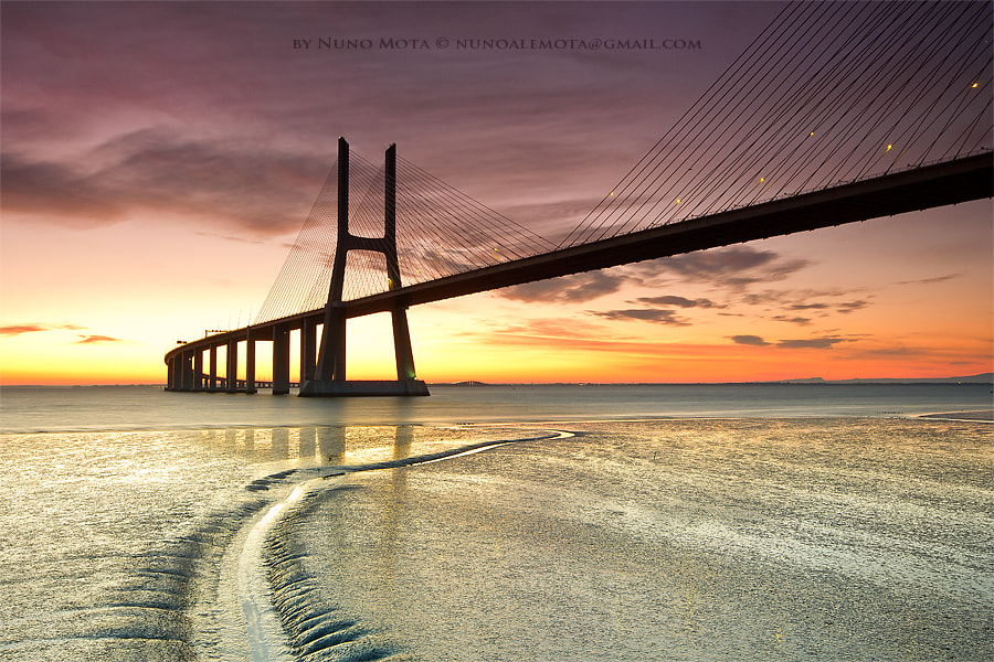 Photograph Ponte Vasco da Gama by Nuno Mota on 500px