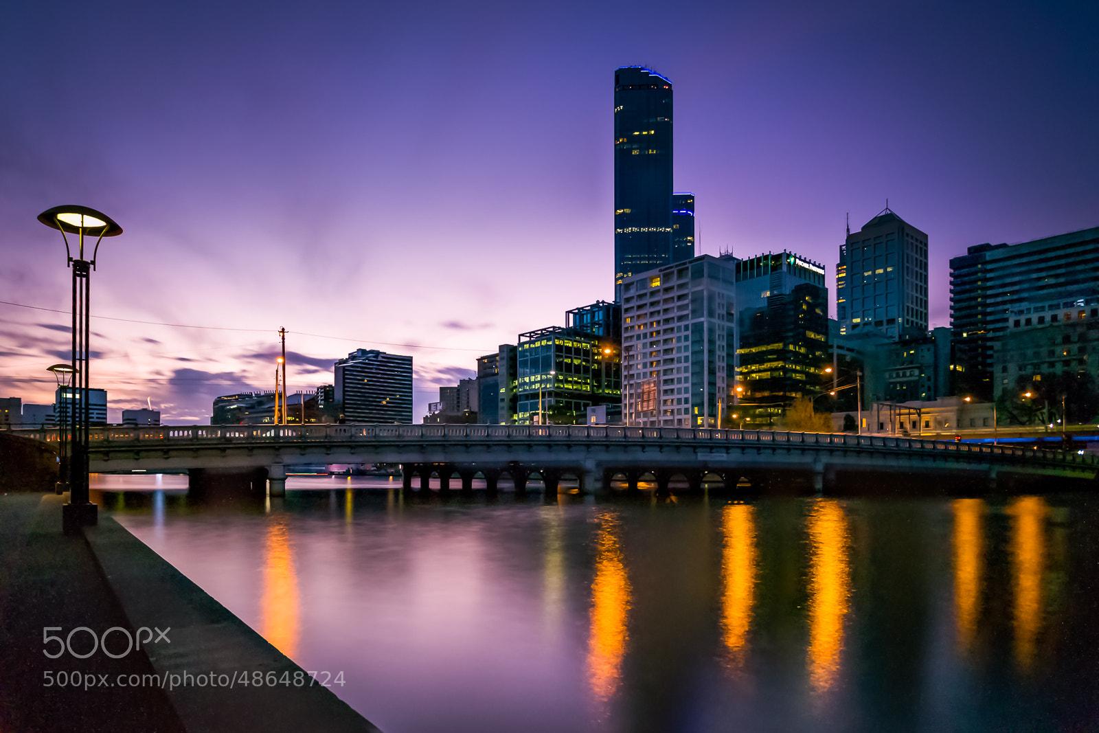 Photograph Southbank purple by Ilan G on 500px
